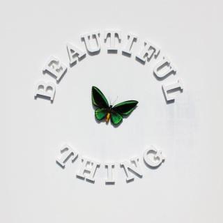 """Stone Roses - Reprodução da capa do Single """"Beautiful Thing"""""""