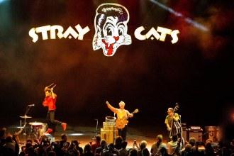 StrayCats - Foto: Divulgação